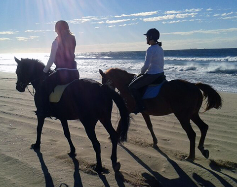Saratoga Montana with Abbey Wagner and Shooting Star with Cindy Meekers riding on a Durban beach
