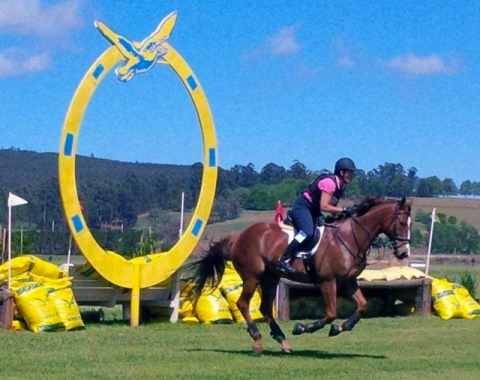 Gill Spells' beautiful Faraway Moon in action at Karkloof eventing