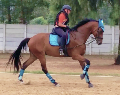 Owner Candice Meise's son riding young talent, Ambeck Uzzo