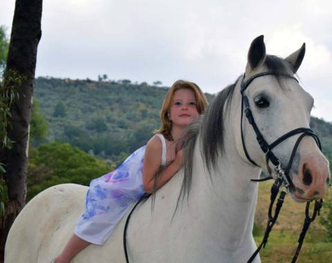 Beautiful photograph of Amber with Tripper