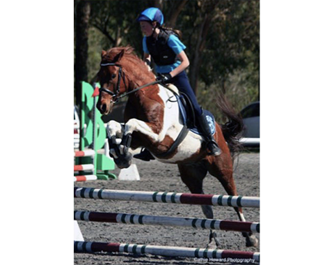 An action photograph of Utah jumping owned by Fiona Thomas