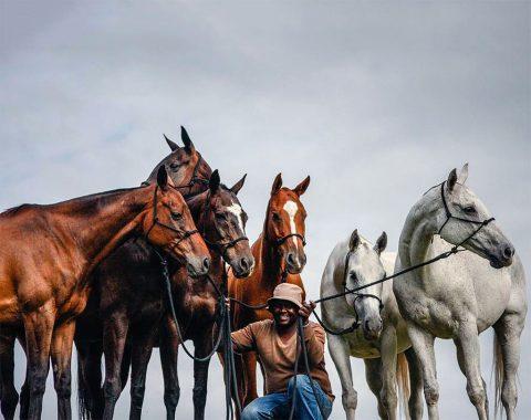 Tessa Moxon's wonderful polo horses seen here with her groom Leonard