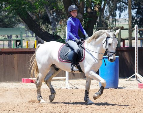 Michelle Swart's daughter Katrien riding Theo