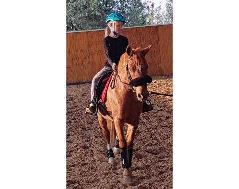 An exciting first ride on Strawberry Shortcake recently bought by Hugh Nicholetts