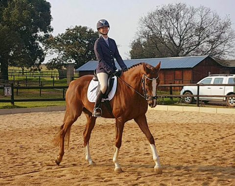 Jenna van Oudtshoorn riding her horse Rossgate's Daring Storm