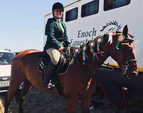 Barbara Venables' beautiful horse Senor Doba