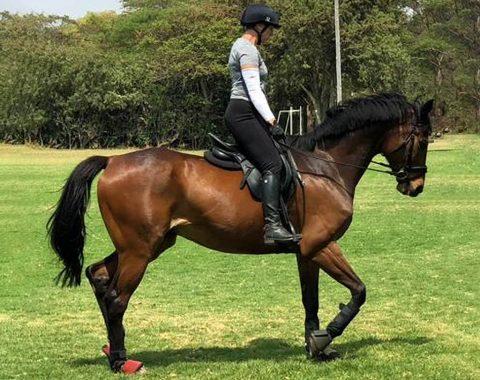Rebecca Wolmarans riding her beautiful Regal Eagle