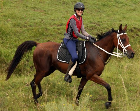 Nicci Carr and Monty enjoying the Suikerbos Multiday ride
