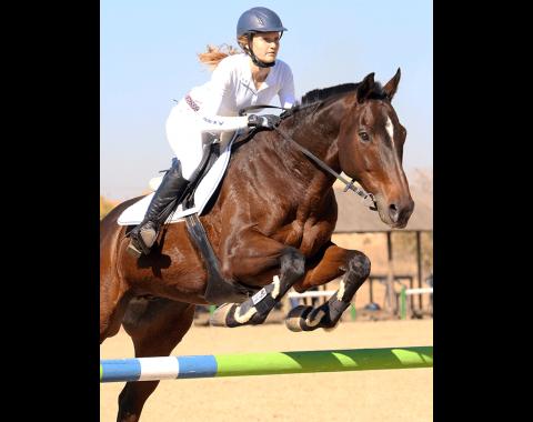 Clarissa's horse Necker Island