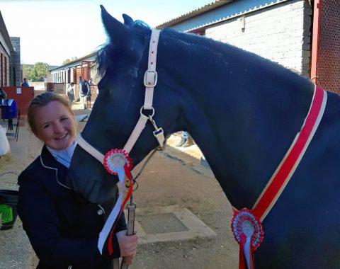 Laura Grose's beautiful horse, Arrow
