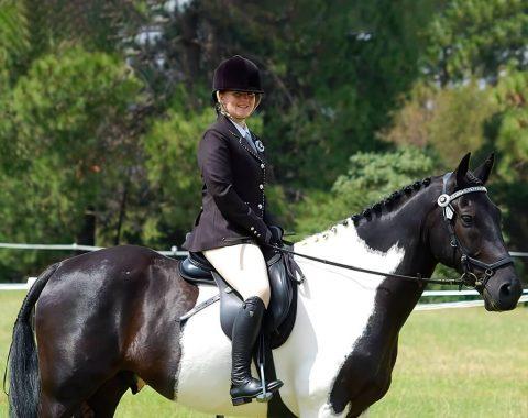 Laura Grose's beautiful horse, Sophia