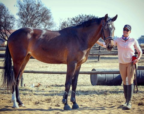 Jessica Moreira's mare White Waters Omelia's Silver Lining